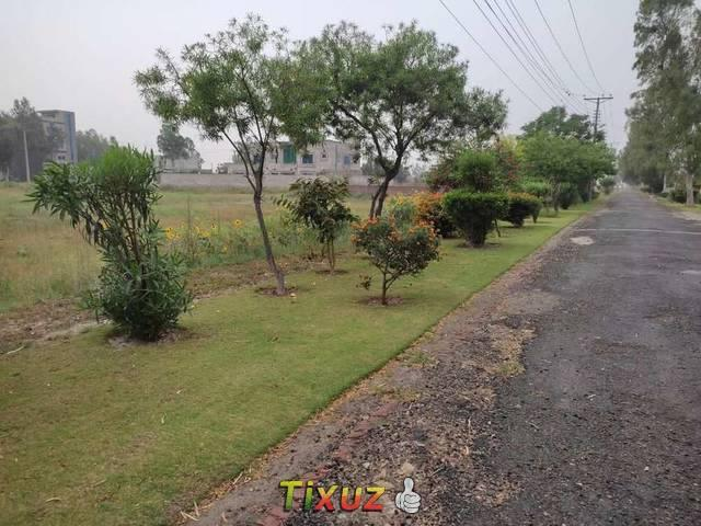 Chinar Bagh In Khyber Block Lda Clear Residential Plot For Sale