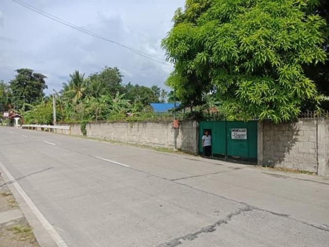 Commercial Lot For Sale In Moalboal Cebu, Along The Hiway