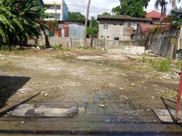 Commercial Lot For Sale Santa Ana, Pateros
