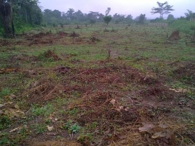 Commercial/ Residential Landed Property At Atan Just Beyond Winners Chapel Canaan Land