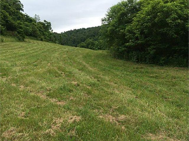 Dennison, Oh Tuscarawas Country Land 91.326000 Acre