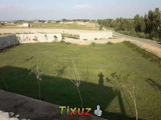 Farm House And Commercial Market For Sale In Swabi