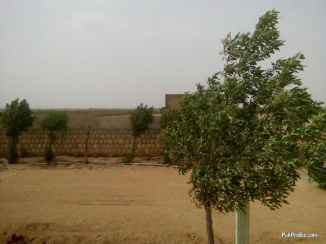 Farm Houses Plots And Land On Installment