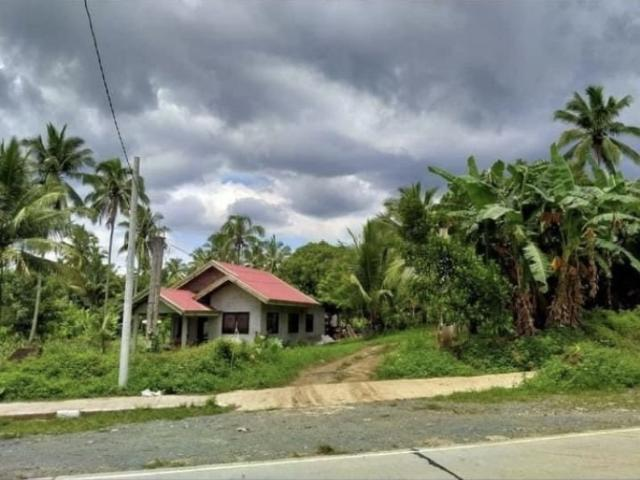 Farm Lot In Alfonso Cavite For Sale Along National Road