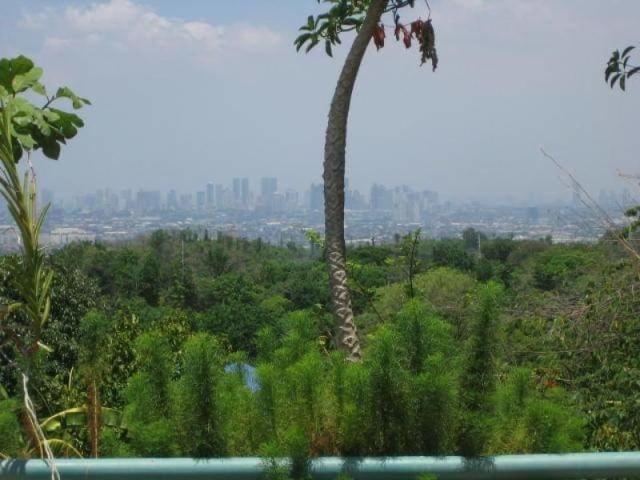 Farm Lot In Antipolo For Sale