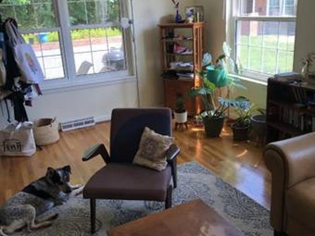Female Roommate Wanted