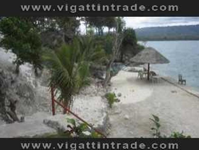 For Rent: Fully Furnished Beach Front House In Moalboal