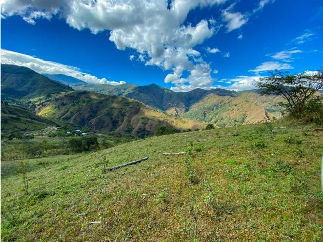 For Sale 1.5 Hectares Surrounded By Nothing But Nature