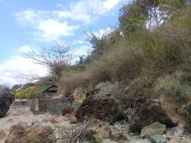 ❗for Sale❗ Beach Front 15,000 Sqm Lot For Sale