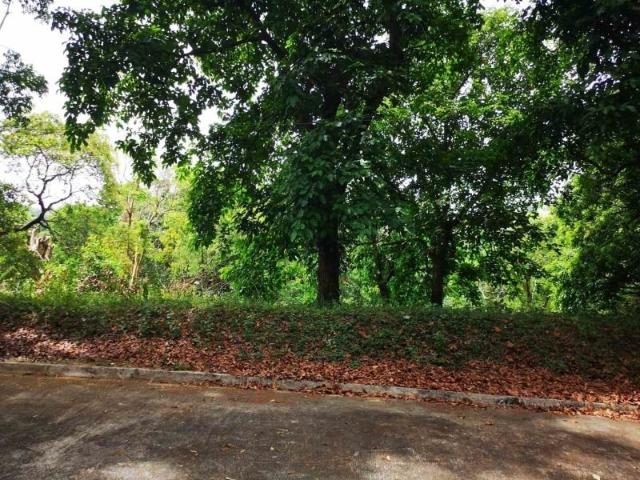For Sale: Lot In Sun Valley Estates Phase 1, Antipolo
