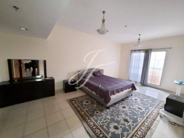 Fully Furnished 1 Bedroom Apt Community View