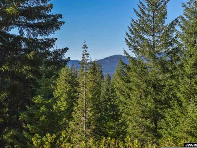 Highway 126 Lot #301, Sweet Home, Us, Or