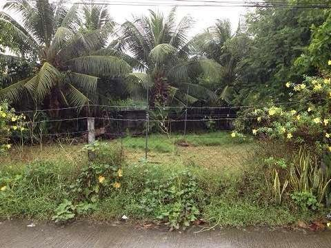 Id 14371 Residential Lot For Sale In Dumaguete