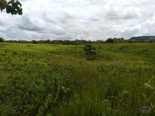 Land And Farm For Sale In Dagohoy