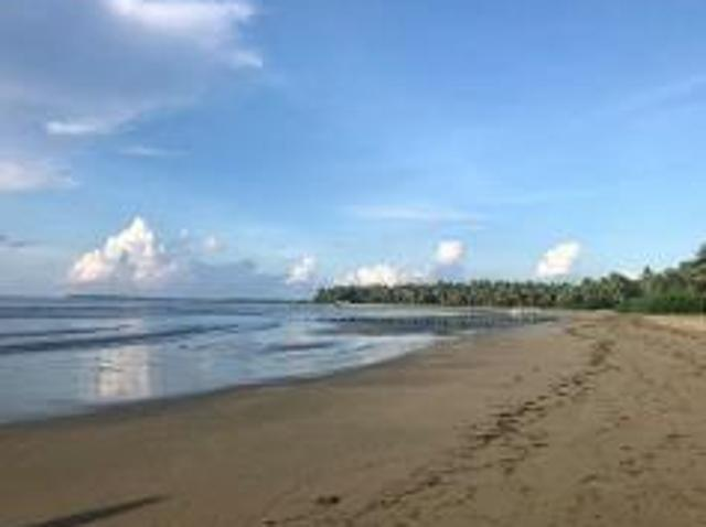 Land And Farm For Sale In Puerto Princesa City For ₱ 7,885,000 With Web Reference 116740517