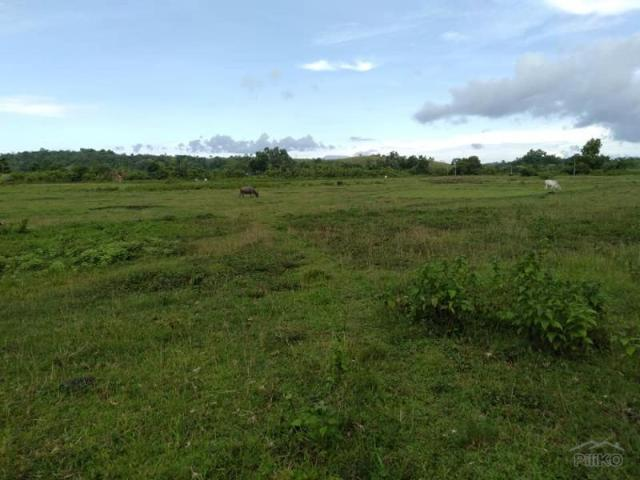 Land And Farm For Sale In Sagbayan