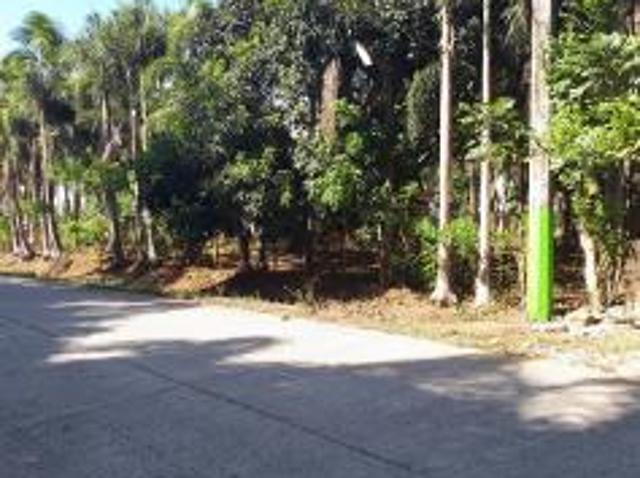 Land And Farm For Sale In Silang For ₱ 50,000,000 With Web Reference 116462803