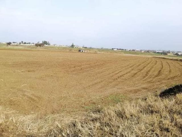 Land For Sale Chak Beli Khan Diffrent Location 8/8.5 Kanal This Piece Available Call Us Pl...