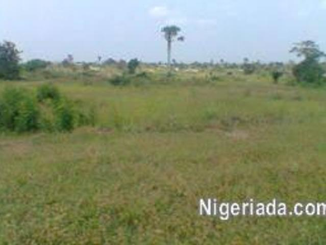 Lands And Property