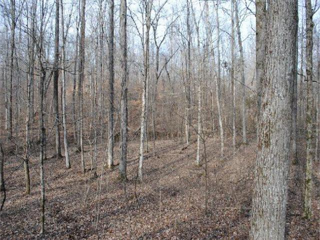 Linden, Tn Perry Country Land 44.570000 Acre