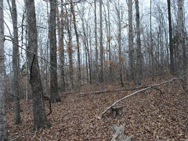 Linden, Tn Perry Country Land 74.800000 Acre