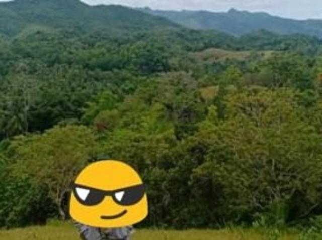 Loboc Overlooking Lot For Sale 1.2 Hectares