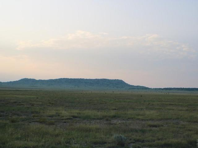 Lot 153 Ghost River Ranch Rye, Co 81069