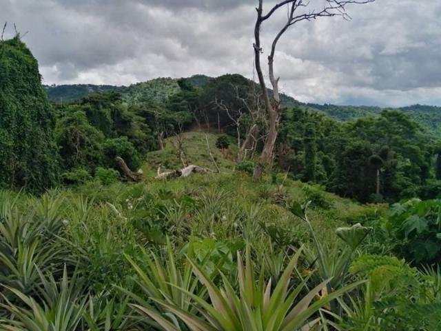 Lot For Sale With Perfect View Of Taal Volcano
