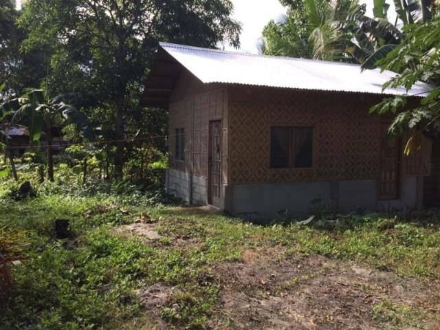 Lot Plus Native House For Sale