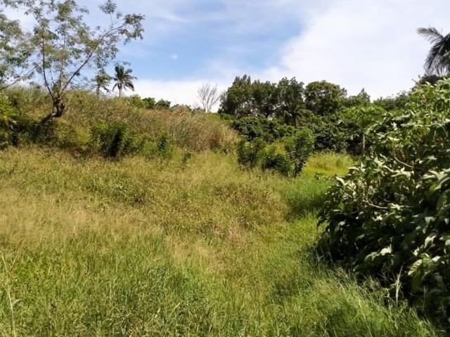 Lots In Tolentino West Tagaytay For Sale Pl#13349