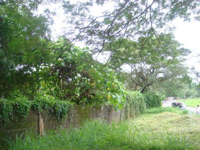 Loyola Heights Quezon City Metro Manila Philippines Vacant Lot For Sale