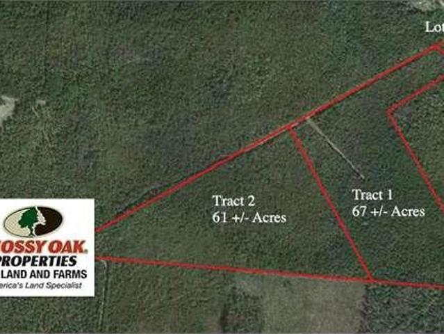 Maple Hill, Nc Pender Country Land 67.0000 Acre