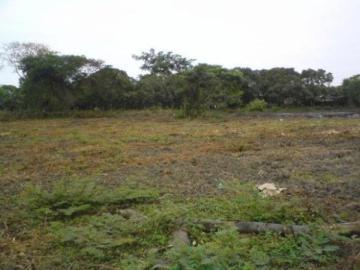De Oportunidad Vendo S Terreno En Venta En Lago Agrio Nueva Loja La Pampa,estrella Del Oriente