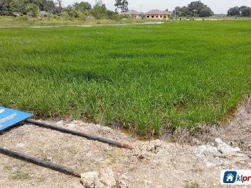 Tanah Pertanian Untuk Dijual Di Melaka Properties In Melaka Mitula Homes