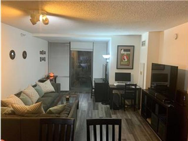 New Downtown/lakeshore East Apartment
