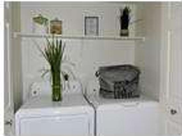 One Br Apartment Large & Bright. $972/mo