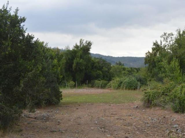 Parcelitas De Agrado En Loteo Altozanos De Vega Ancoa