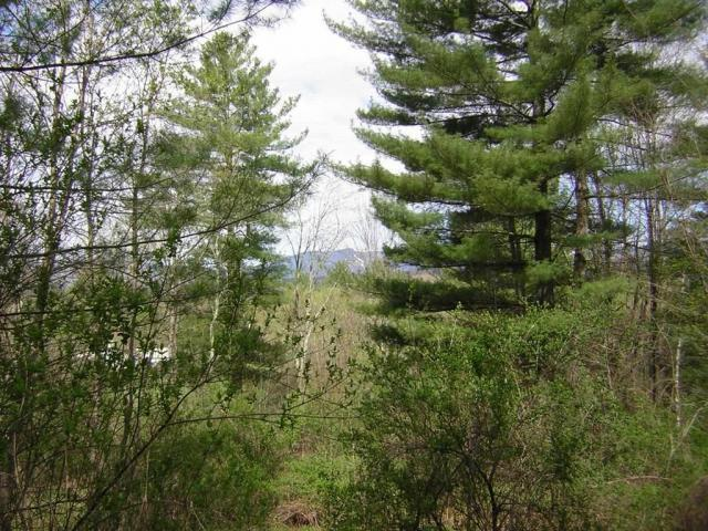 Plot For Sale In Stowe, Vermont