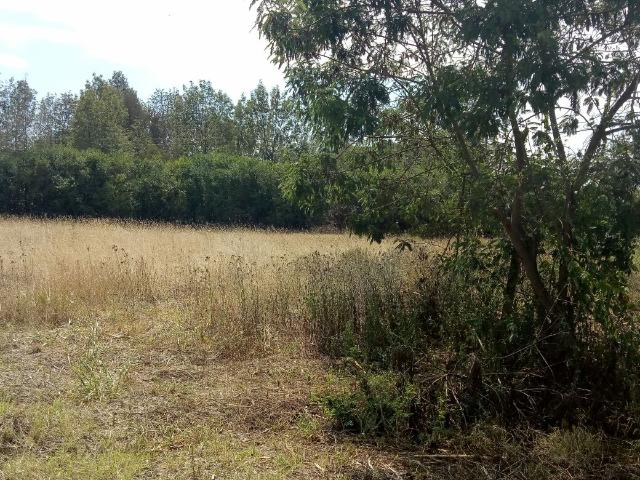 Plot / Land For Sale In Ngong, With A Payment Plan