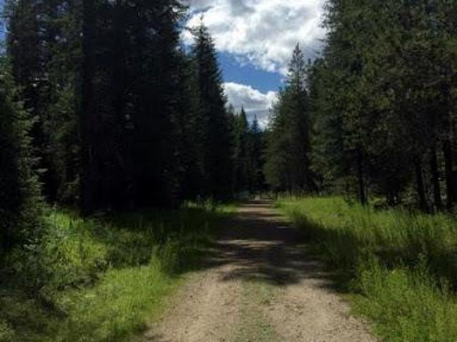 Priest River, Great Opportunity To Buy Untouched Land In