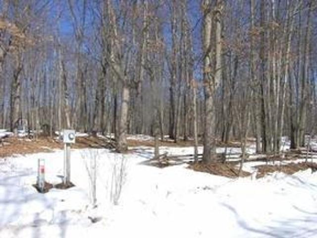 Property For Sale In Farwell, Mi For $6800