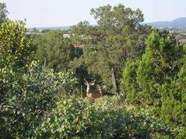 Property For Sale In Silver City, Nm For $90000