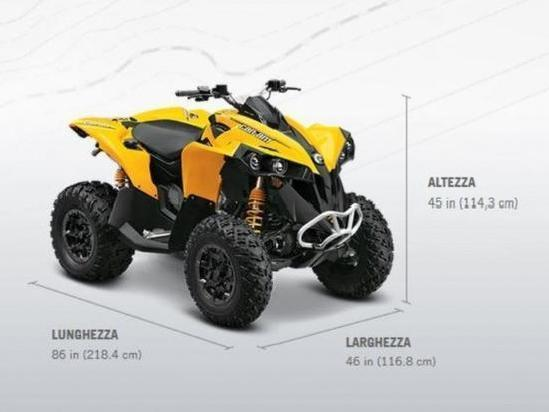 Quad Can Am Brp Renegade 800 Efi 800 R Std