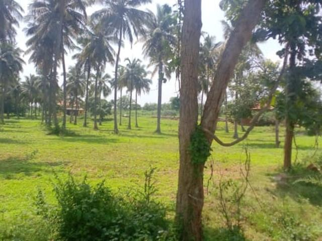 Rental | 1200 Sq.yd. Plot In Electronic City Phase Ii