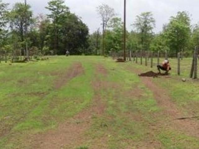 Resale   3 Acre Land In Dhokali