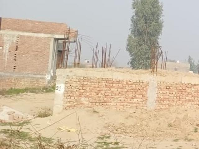 Resale   540 Sq.ft. Plot In Sector 142