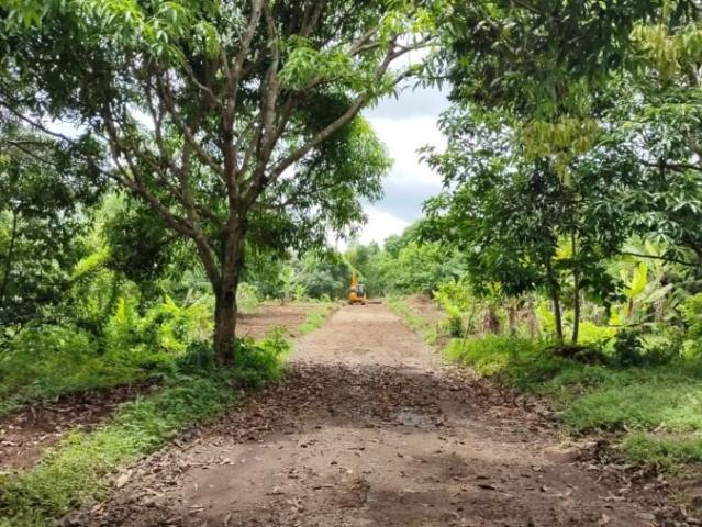 Residential Farm Lot In Silang Cavite