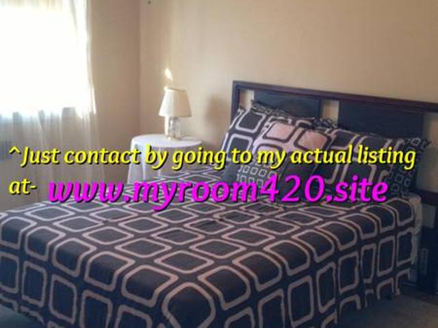 Room Available In 3 Bed Apartment Dorchester Near Shawmut T Station