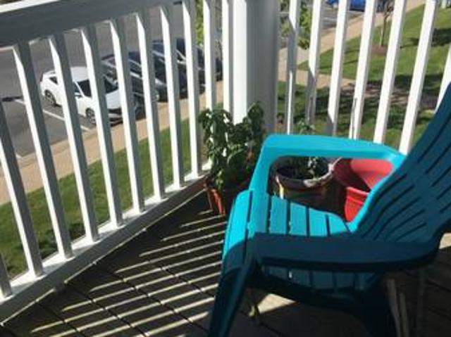 Room In Two Bedroom Apartment Fast Fiber Internet Charlottesville