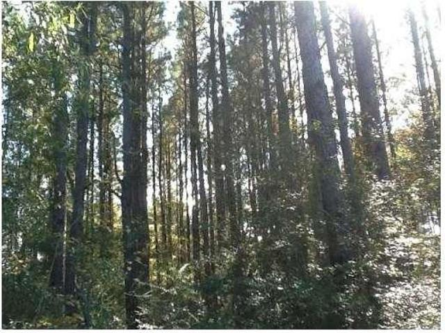 Ruth, Ms Pike Country Land 38.5 Acre
